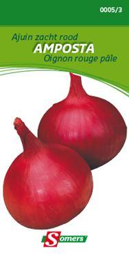 Oignon Rouge Pâle Doux Amposta
