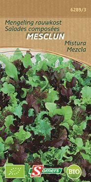 Mesclun-Misticanza