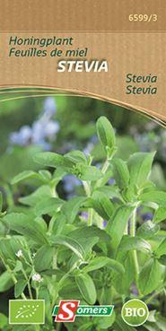 Stevia feuilles de miel