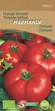 Tomate hâtive Marmande