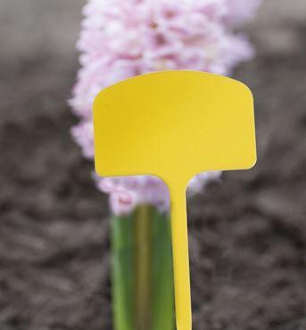 Etiquettes en T à planter en PVC - 12,5 cm - 10 x