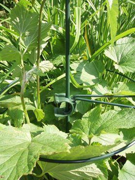 Anneau cercle (Ø4,5 mm) pour tuteur-coupleur - Ø40 cm