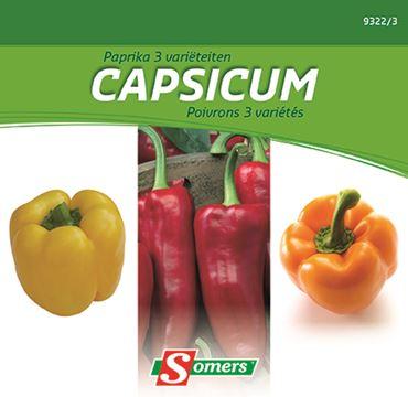 Poivron 3 Varietes Capsicum